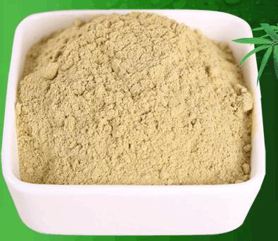 铁皮石斛粉的功效与作用