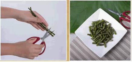 铁皮石斛鲜条榨汁步骤一图示