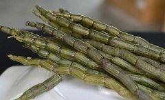 新鲜铁皮石斛怎么保存?