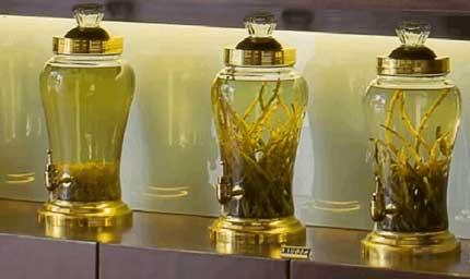 铁皮石斛搭配不同药材泡酒,其功效也不一样