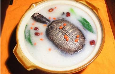 铁皮石斛甲鱼汤