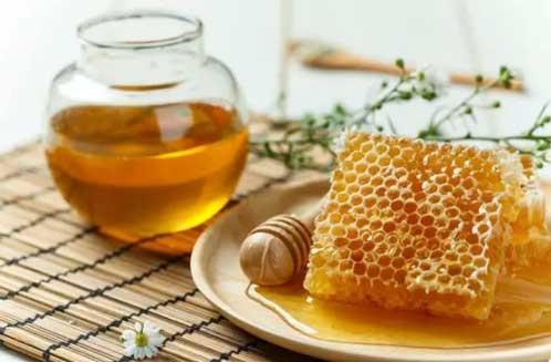 铁皮石斛与蜂蜜图片