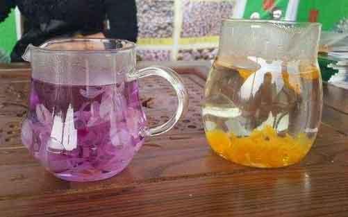 紫皮石斛花和鼓槌石斛花泡水