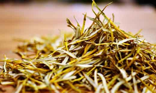 金钗石斛茶片图片