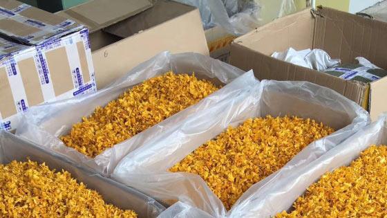 广州药材批发市场的石斛花