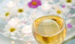 铁皮石斛花可以和菊花一起泡茶喝
