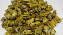 黄草石斛与铁皮石斛的区别