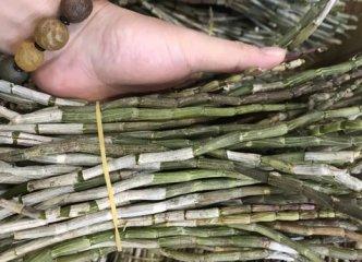 铁皮石斛鲜枝怎么吃,铁皮石斛鲜